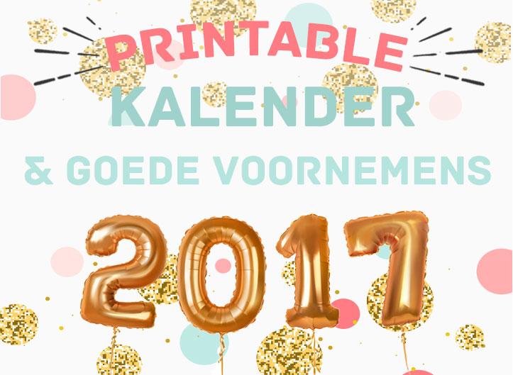 Free Printable Kalender für dein 2017