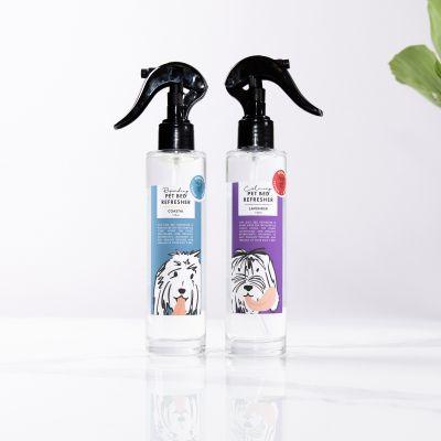 Duftspray für den Hunde-Schlafplatz