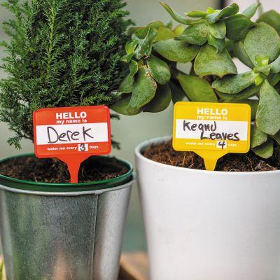 Namensschilder für Pflanzen 12er-Set