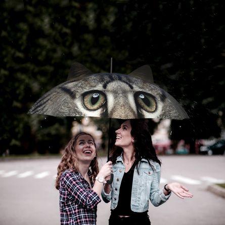 Regenschirm mit Ohren Hund und Katze