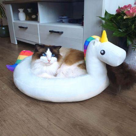 Einhorn Kuschelplatz für Hund und Katze