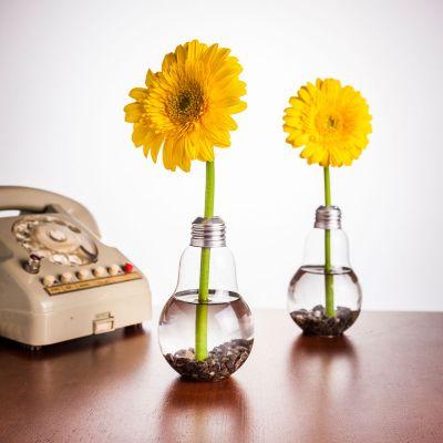 Geschenk für Paare - Glühbirnen Vase 6er Set