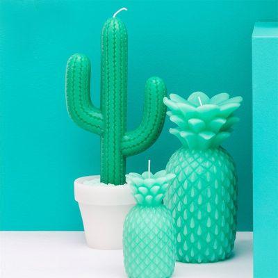Witzige Geschenke - Kaktus-Kerze