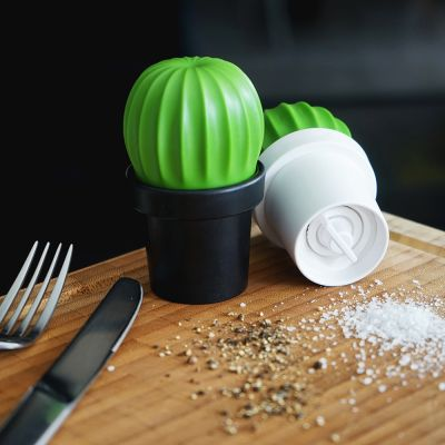Adventskalender füllen - Kaktus Salz- und Pfeffermühle