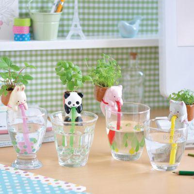 Geschenke für Kinder - Chuppon Tierische Kräutertöpfchen mit Selbstbewässerung