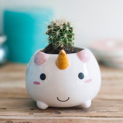Geschenke für Frauen - Einhorn Mini Blumentopf