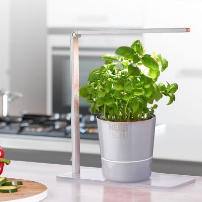 Küche & Grill - Herb Booster Kräuterlampe