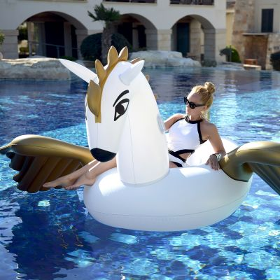 Sommer Gadgets - Aufblasbarer Pegasus