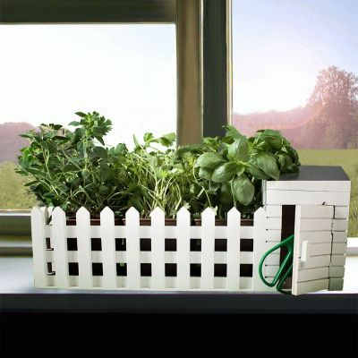 Sale - Mini Kräutergarten für drinnen