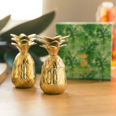 Grillen & Gartenparty - Ananas Shotgläser aus Metall