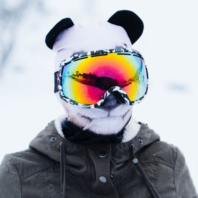 Fashion - Beardo Tierische Sturmhauben Skimasken