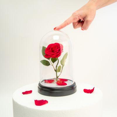 Beleuchtung - Die Schöne und das Biest: Verzauberte Rosen Leuchte