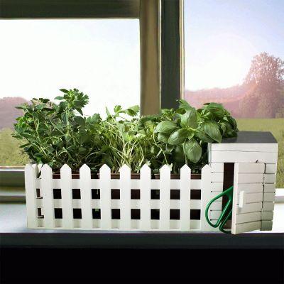 Weihnachtsgeschenke für Eltern - Mini Kräutergarten für drinnen