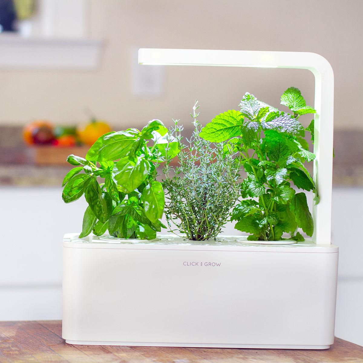 Click & Grow Smarter Kräutergarten für drinnen